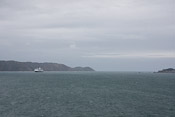 Wellington Harbour Bay
