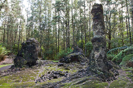 Lava Tree State Monument